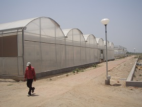 Greenhouses in India