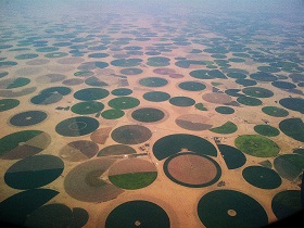 Pivot cultivation in Saudi Arabia
